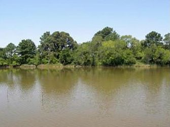 14442_willowpoint300_riverview2.jpg